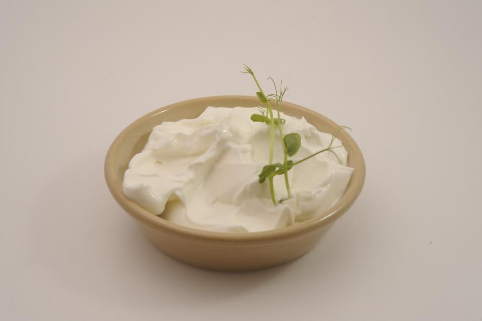 JetDine Menu D5 - Greek Joghurt